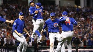The Cubs Won The World Series
